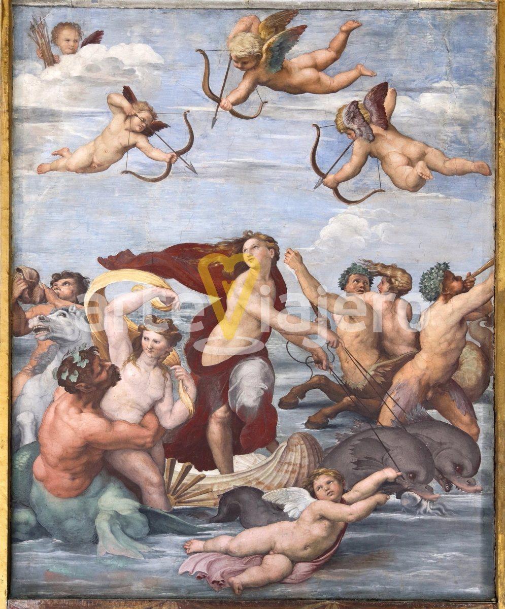 triunfo de galatea, villa farnesina