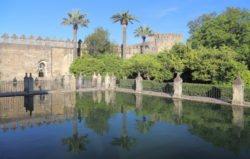 estanque alcázar de los reyes cristianos