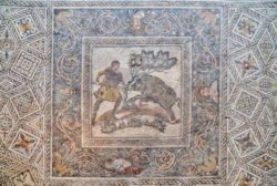 mosaico con venatio