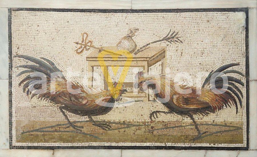 mosaico con pela de gallos