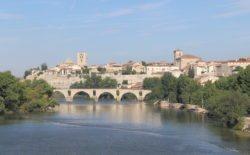 puente de piedra zamora