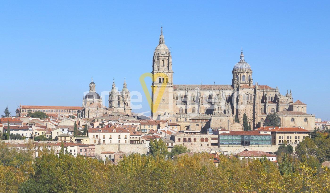 catedral salamanca torre del gallo