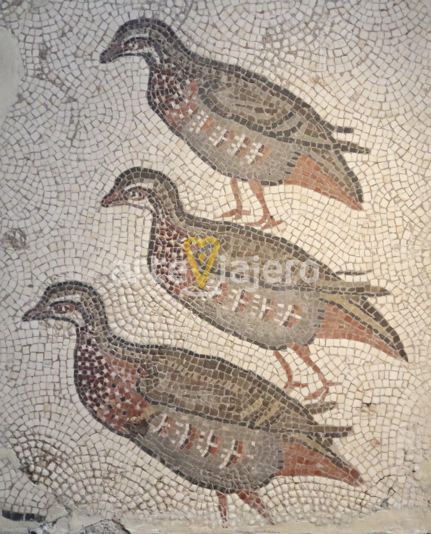 mosaico perdices
