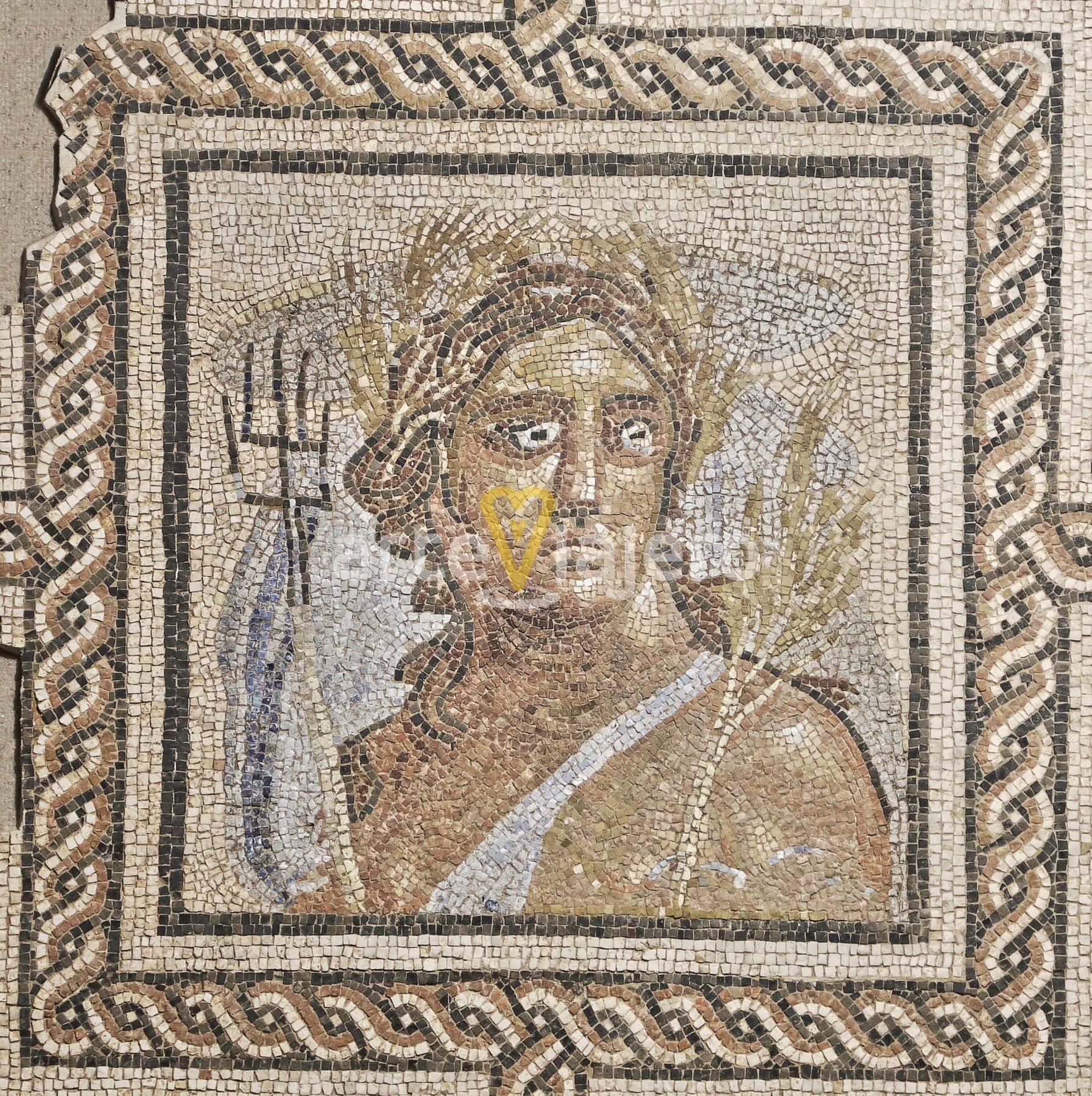 mosaico de las estaciones