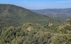 paisaje románico