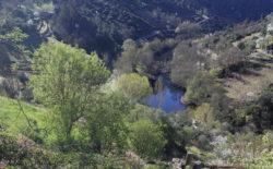 río bibey