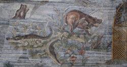 mosaico cocodrilo hipopótamo