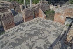 mosaico del frigidarium