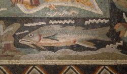 mosaico romano con pez