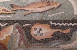 mosaico mar