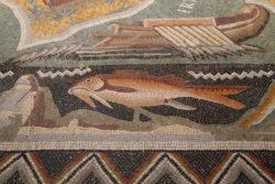 mosaico de ammaedara