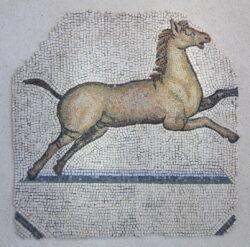mosaico romano caballo