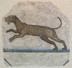 mosaico leopardo