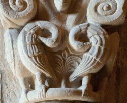 pelícanos en el románico