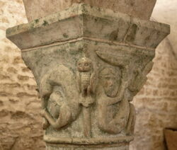 esciápodos románico