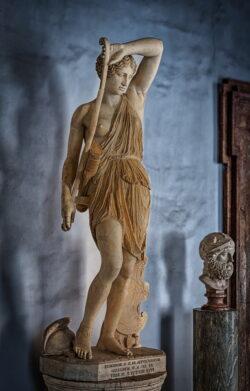 amazona herida museos capitolinos